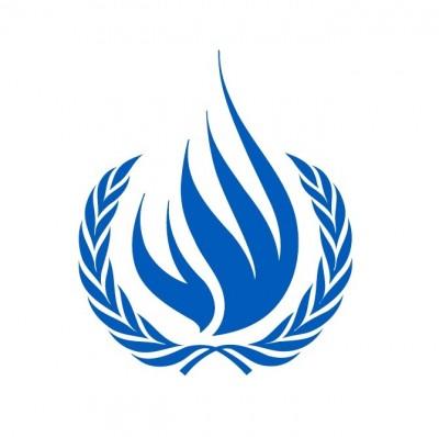 Venezuela / Manifestaciones: Expertos de la ONU piden aclaración sobre supuestas detenciones arbitrarias y uso de violencia