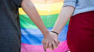 Acnur Venezuela y ONG regionales impulsan agenda para la protección de las personas LGBTIQ