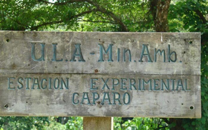 COMUNICADO: Ante la grave destrucción ambiental de la Estación Experimental Caparo de la Universidad de Los Andes