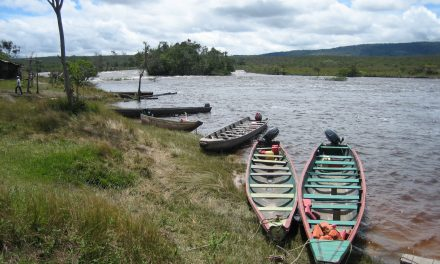 GTAI alerta sobre amenaza de muerte a líder indígena