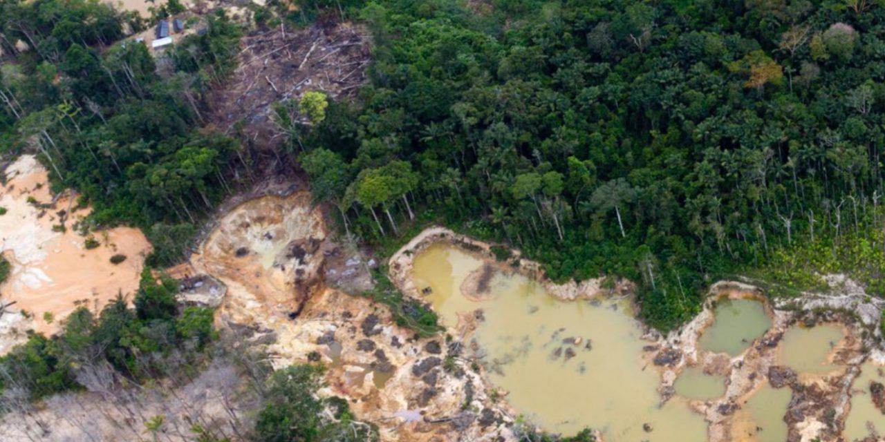 Crónica Uno/ Destrucción del Arco Minero se replica en Aragua y Carabobo
