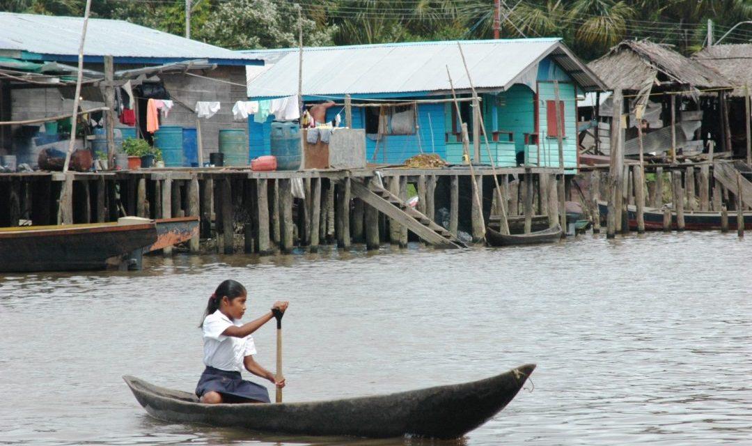 Provea / Informe Especial:Condiciones de salud y alimentación de la población indígena warao del estado Delta Amacuro