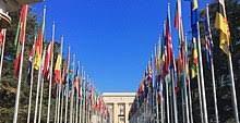 121 ONG venezolanas remiten carta a ONU-Hábitat para que el país no sea excluído de su plan Covid-19