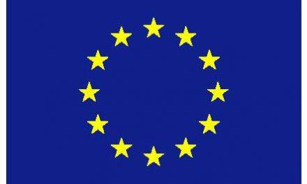 UE | Es necesario un terreno común para trabajar hacia una salida pacífica de la crisis venezolana