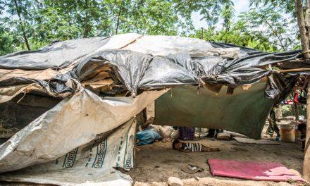 Informe Especial Provea: Crisis migratoria venezolana y responsabilidad de los Estados